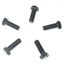 Oil Pan Bolts